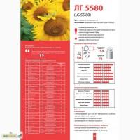 Семена 5580 Лимагрейн. Доступная цена