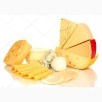 СРОЧНО продам на экспорт сыр твердый Российский от производителя