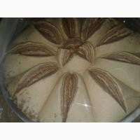 Сухофрукты в шоколаде, Халва. Шоколадные конфеты. Турецкая халва. оптом в розницу