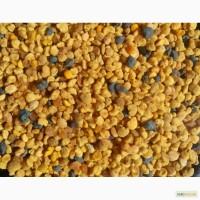 Продам пыльцу 2017 опт и розница