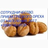 Куплю орех от населения В скорлупе, 2017 года