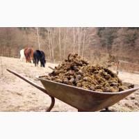 Продам конный перегной на удобрение