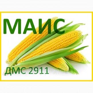 Продам гібрид кукурудзи ДМС 2911 (2017 РОКУ)