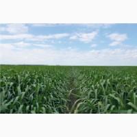 АБК технологія Продам мікродобрива, стимулятори росту рослин
