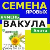 Продам ячмень Вакула. Агротрейд/Agroseeds