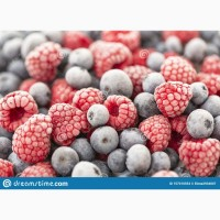 Підготовка ягоди до ЕКСПОРТУ