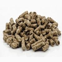 Продам ШРОТ подсолнечный 39.6% протеин гранула