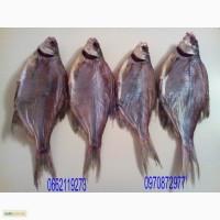 Речная рыба.Под/лещ вяленый