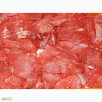Продам говядину высший сорт