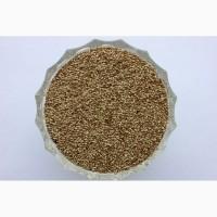 Продам семена Тимофеевки, Сумская область, Конотоп