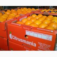 Апельсины от производителя, Турция