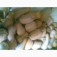 Продаються гарбузи для каш та пюре сортів: Мускат де прованс, Арабатський, Руж де Темз