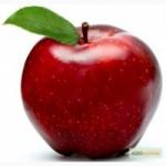 Куплю яблука на переробку