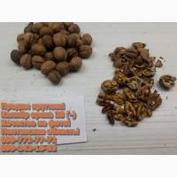 Продам минусовку Грецкого ореха, калибр (28-)!Урожай 2020, бойный