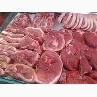Продам м#039;ясо свинини