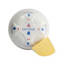 Сыр оптом, Киев