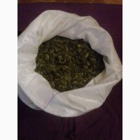 Продам посевной материал семян тыквы