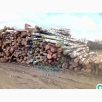 Продам берёзовые дрова с документами наша погрузка