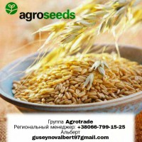Продам ячмень Вакула. Посевной материал. Агротрейд/Agroseeds