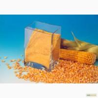Продам Глютен кукурузный