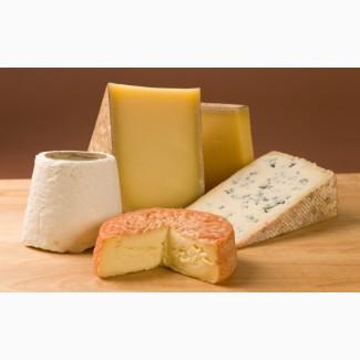 СРОЧНО продам на экспорт сырный продукт ГОСТ