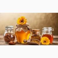 Закупаем мед подсолнечника урожая 2017 г, Днепр, Днепропетровская обл