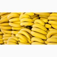Продам бананы Эквадор
