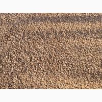 Яра пшениця 8т супер клейковина і білок
