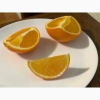 Продам апельсини Іспанія