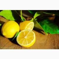 Лимон Испания