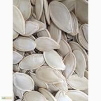 Продам 18 т семена тыквы. Калибр 9+, 10+, 11+, После Цветосортировочной машины