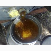 Продам мед оптом 8 тонн