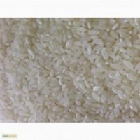 Куплю рисовую крупу