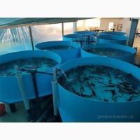 Строительство ферм разведения рыбы, раков, креветок