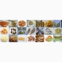 Продам Голд Фиш солено-сушеный (крупнее Желт полосатика)