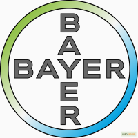 Семена озимого рапса BAYER