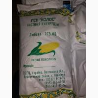 Продам гібрид кукурузи ЛЮБАВА 279 МВ (урож.2015 р.)