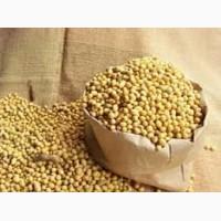 Семена сои Аполло от ФХ УкрАгро-Дар