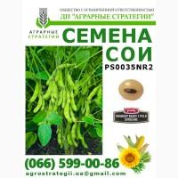 Семена сои PS0035 NR2 (Раундап RR2Y)
