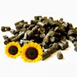 Соняшникова гранула. Пелети з лушпиння соняшника
