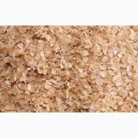 Предприятие купит отруби пшеничные на постоянной основе в больших количествах