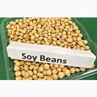 Продам Сою/ SoyBean / Протеин 43 min / Бразилия / Аргентина / США