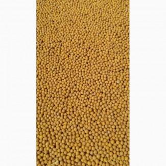 Продам семена горчицы белой, жёлтой на сидераты и семена. Урожай-2017 г