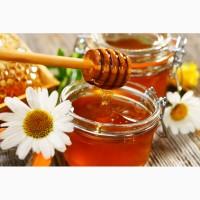 Куплю мед в Херсонской обл Дорого