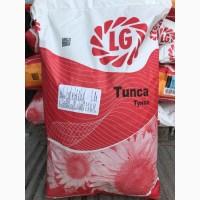 Распродажа урожай 2017года! Продам семена подсолнечника LIMAGRAIN Тунка