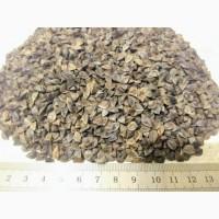 Продам насіння гречки сорт Дев#039;ятка (БН, І репродукція)