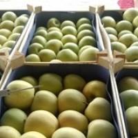 Продам яблоки сорт чимпион стара голден с доставкой
