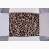 Принимаем заказы на грецкий орех 2018 года