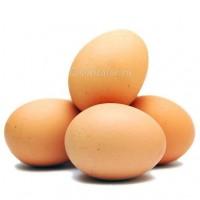 Куплю яйцо С1 (белое и коричневое) от одной фуры