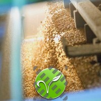 Очистка зерна решетами